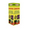 Constifin Jarabe (250ml)