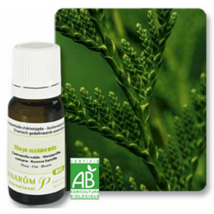 Thuya Occidentalis aceite escencial Pranarom (10 ml)