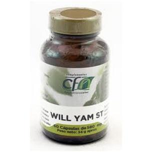CFN Wild Yam St (60 cáp.)