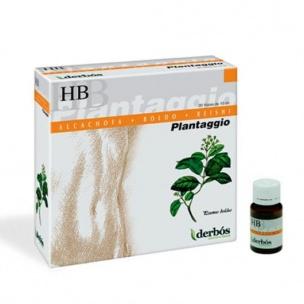 Plantaggio HB Derbos (20viales)