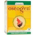 Oseogen articular cápsulas Drasanvi (72 cap)