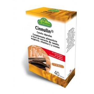 Dr. Dünner Cinnulin (40 cáp.)