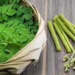 Moringa Connatur, beneficios en nuestra salud